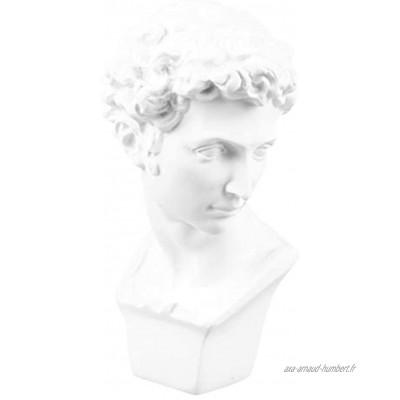 CLISPEED David Sculpture décorative Buste de David Statue Portrait Personnage Sculpture Artisanat Décoration Maison pour Bureau Table Ornement