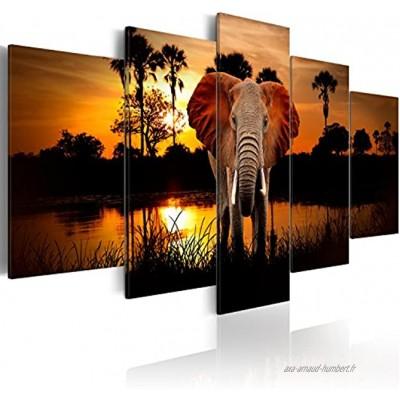 B&D XXL murando Impression sur Toile intissee 200x100 cm 5 Pieces Tableau Tableaux Decoration Murale Photo Image Artistique Photographie Graphique Paysage Afrique Animal Animaux éléphant g-C-0024-b-m