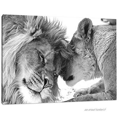 Best for Home Impression d'art murale avec cadre Motif: couple de lions dans la savane Noir blanc Toile noir blanc 120 x 80 cm