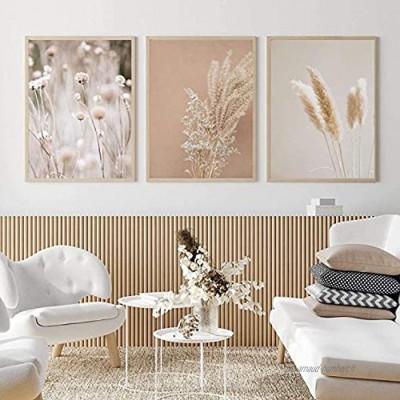 Pauorme Affiche Moderne Pampa Herbe Plantes Nature Paysage Peinture Herbe séchée Moderne Boho Affiche botanique Mur Photos décor3 pièces 50x70 cm sans Cadre