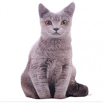 Sobotoo 50 cm 3D réaliste Coussin chat en peluche Coussin canapé chaise coussin peluche peluche peluche peluche jouet poupée décoration maison cadeau enfant A